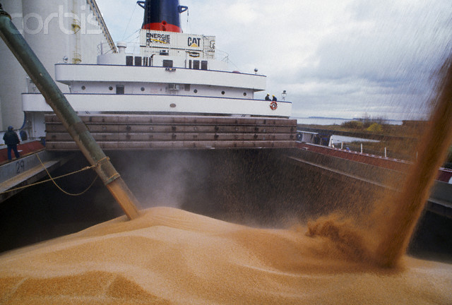 transportation of bulk goods by sea, coal, grain, ore