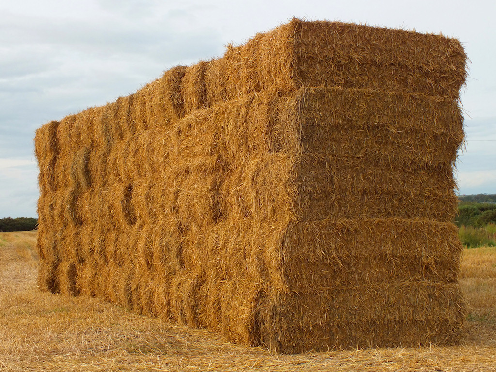 Export of bulgarian straw, in bales 1