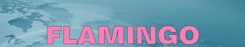Flamingo Group wish you Happy Holidays!